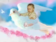 Baby Flying on a Bird