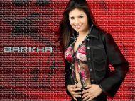 Barkha