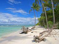 Desktop Wallpapers Natural Backgrounds Beach Beauty