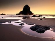 Boardman State Park, Near Brookings Harbor, Oregon
