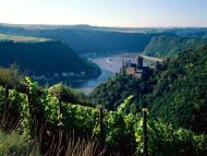 Burg Katz Above the Rhine, Germany