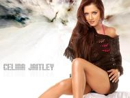 Desktop Wallpapers  Celina Jaitley Backgrounds  Celina -4622