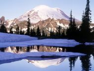 Cool Reflections, Tipsoo Lake, Mount Rainier, Washington
