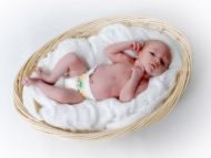 Cute Baby in a Basket