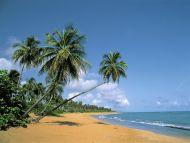Deserted Beach, Puerto Rico