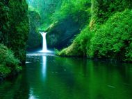 Eagle Creek Wilderness Area, Columbia River Gorge Oregon