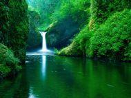 Eagle Creek Wilderness Area, Columbia River Gorge Oregon