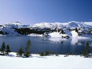 Emerging Winter, Yosemite National Park