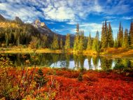 fall nature backgrounds. Fall In The Tatoosh Wilderness, Mount Rainier National Park Nature Backgrounds N