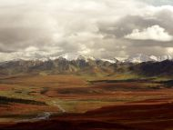 Fall Tundra, Denali National Park, Alaska