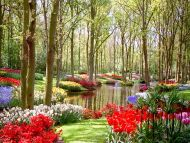 Desktop Wallpapers » Natural Backgrounds » Garden and ...