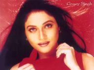 Desktop Wallpapers » Gracy Singh Backgrounds (Bollywood ...