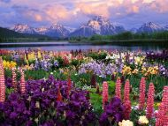 обои для рабочего стола лето природа россии № 495826 бесплатно