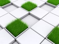 Grass in Cube