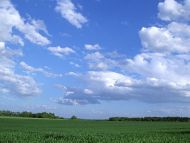 Green Farm and Blue Sky
