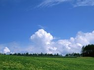 Green Farm and Clouds