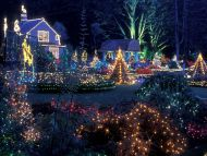 Holiday Lights, Shore Acres State Park, Oregon