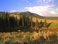 Lamar River Valley, Yellowstone, Wyoming