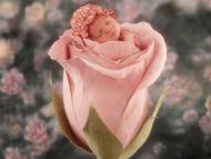 desktop wallpapers » babies backgrounds » little cute baby in pink