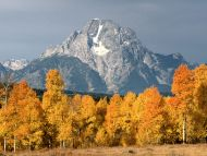 Mount Moran in Autumn, Wyoming