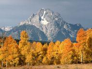 Mount Moran in Autumn, Wyoming