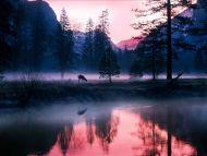 Mystical Waters, Yosemite National Park, California