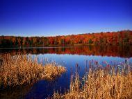 Natural View, Pennsylvania