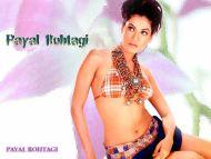 desktop wallpapers » payal rohatgi backgrounds » payal rohatgi » www
