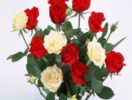 Desktop Wallpapers Flowers Backgrounds Red And White Roses Www