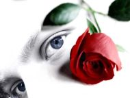 Red Rose with Blue Eyes