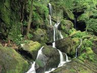 Roaring Fork, Smoky Mountains, Tennessee