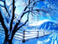 Romaintic Snowing Sky