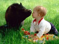 красивые фото животных природы и детей