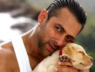 Salman Khan Salman Khan Background is Currently 4.21/5; No Vote No Vote