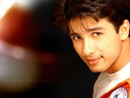sahid kapoor wallpaper download