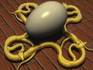 Snakes Eggs