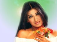 Desktop Wallpapers » Sonali Bendre Backgrounds » Sonali ...