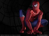 Spiderman is Back