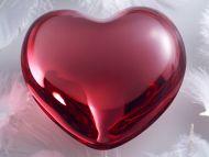 The Big Love Heart
