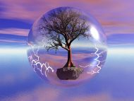 Tree in a Bubble