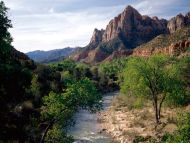 Virgin River and the Watchman, Zion National Park, Utah