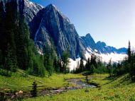 winding stream banff national park alberta canada