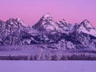 Winter Dawn, Grand Teton National Park, Wyoming